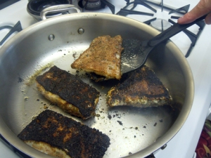 CountryRockRecipes.com's Blackened Cajun Catfish